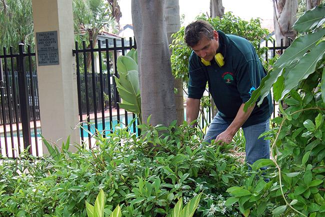 Ezko Gardening